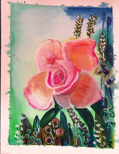 Wild Rose IV